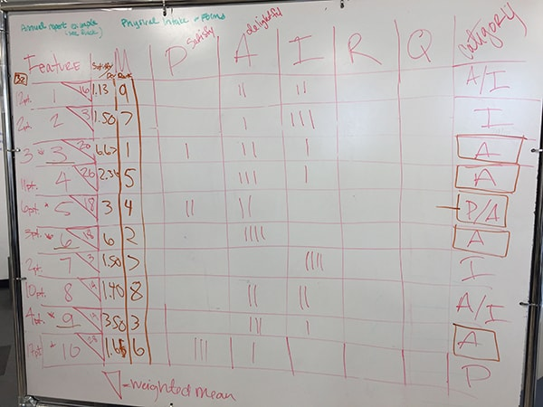 grid showing a kano analysis of survey results